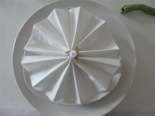 Pliage des serviettes tables festives - Plier des serviettes de table ...