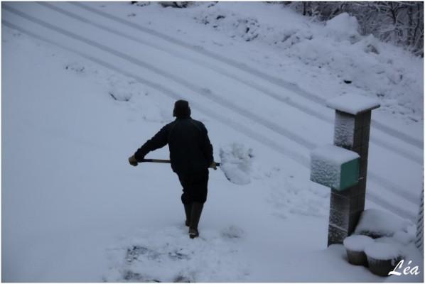 Neige 8157 JC chasse neige