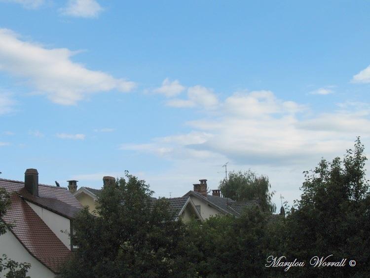 Ciel d'Alsace 283