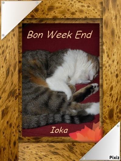 Bon w.e ioka