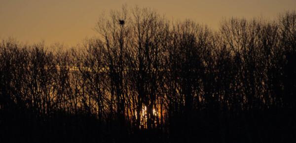 Lever de soleil3
