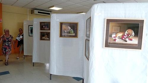 Exposition à Clénay (Côte d'Or)