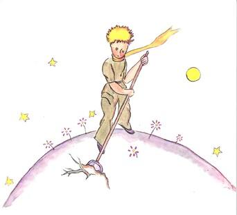 Petit Prince 2