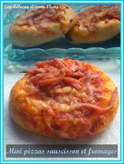 Mini-pizzas-avec-la-pate-de-Kaouther--6-.JPG
