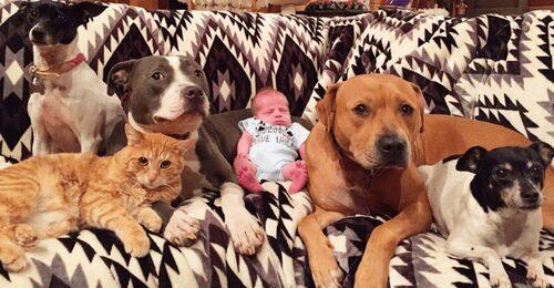 (-*♥*-)  Elle s'inquiétait de ramener son bébé à la maison avec 5 animaux rescapés, mais leur rencontre l'a rapidement soulagée.