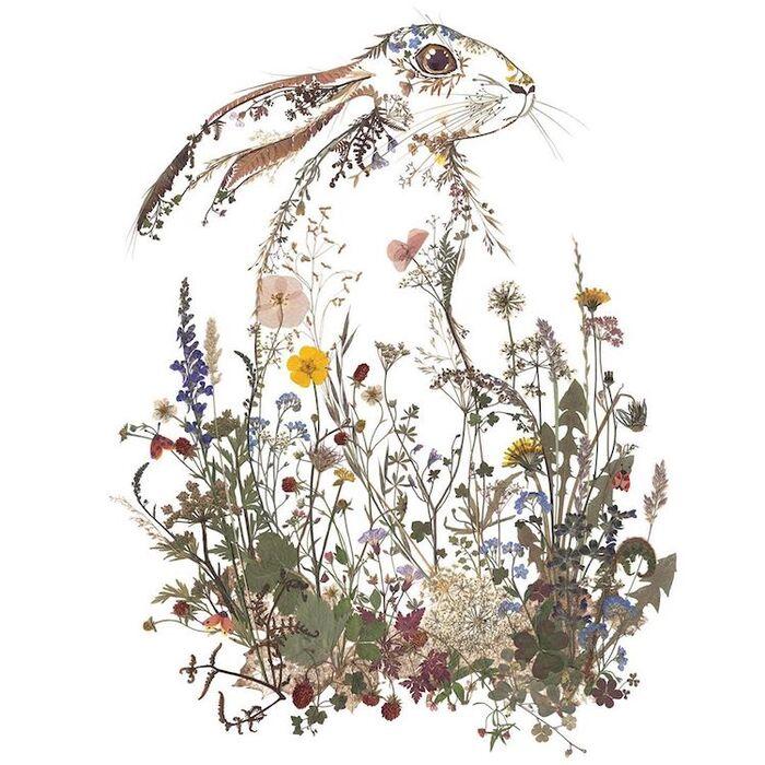 Les tableaux de fleurs séchées de Helen Ahpornsiri