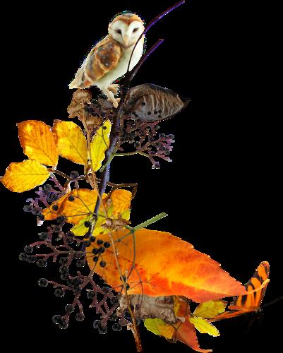 priss_flutteringleaves_cluster02.png