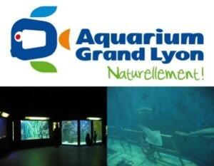 aquarium_lyon.jpg