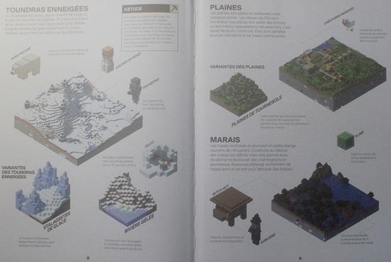 """Minecraft : Le coffret expert spécial survie """"Livre Jeux Vidéos"""""""