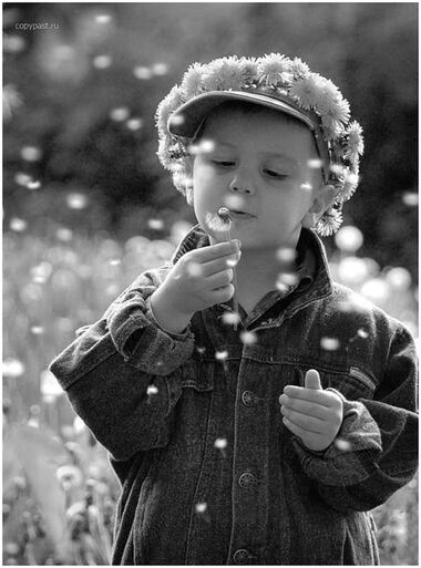 remember blowing dandelions, as a child?