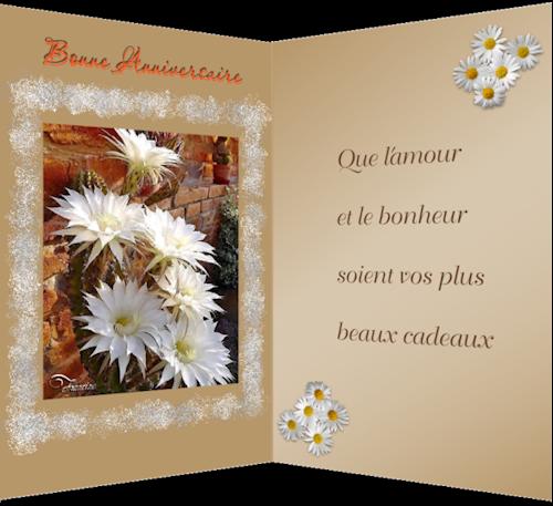 Les cartes de Francine