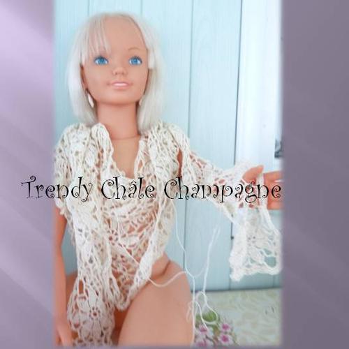 """Défi >> Grannys>> Projets Châle """"Champagne """"(6)"""