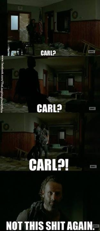 The Walking Dead season 4 Memes 9