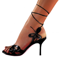 Une chaussure ...