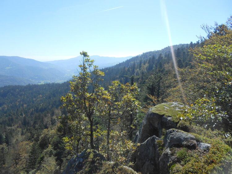 Vosges-le massif du Ventron
