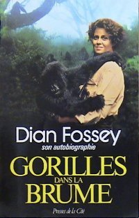 Gorille dans la brume.