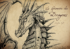 le grimoire des dragons 1