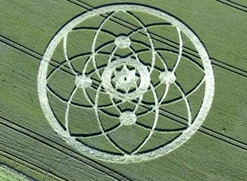 Crop circles 2013