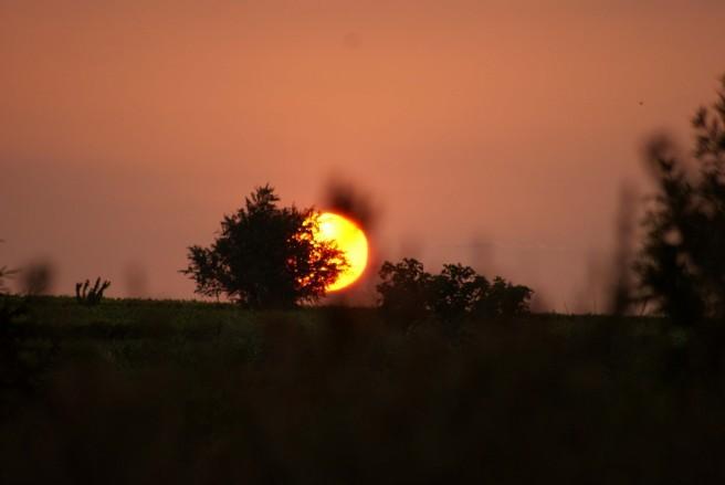 Lever de soleil 11581