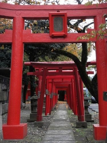 L'harmonie japonaise