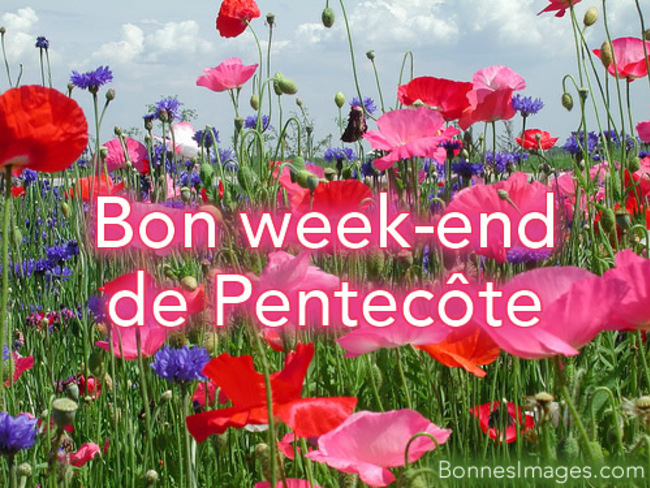 UN BON WEEKEND A TOUS !
