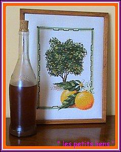 vin d'orange.broderie oranger brod 1 diapo GF