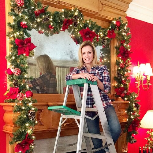 Le Noel de Donna Mills