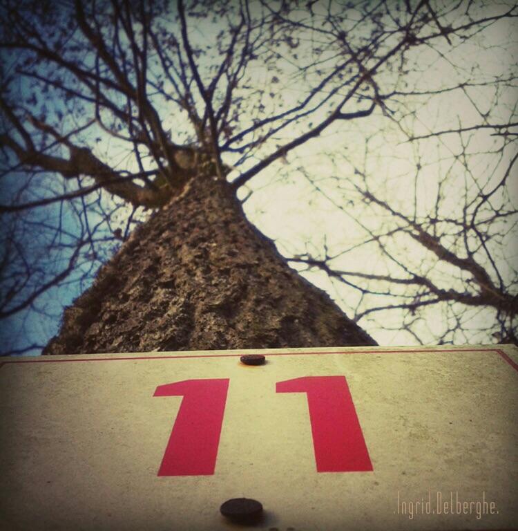 Jour 11 - Onze Onze Onze