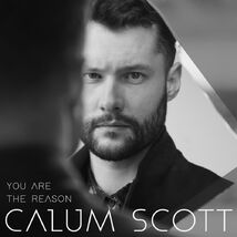 "Résultat de recherche d'images pour ""calum scott you are the reason"""