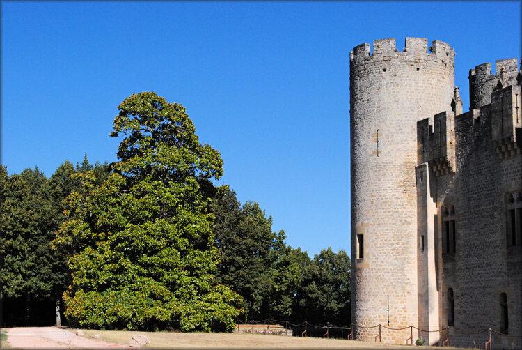 Arrière du château de Roquetaillade (Gironde)