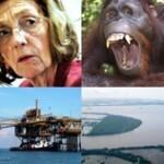 Nicole Bricq annonce qu'elle part en Indonésie pour promouvoir l'exploration offshore de Total à Bornéo