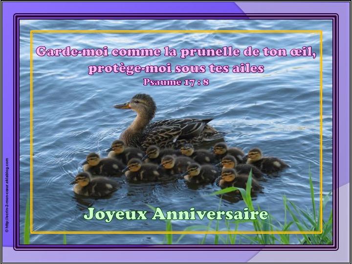 Joyeux Anniversaire - Psaumes 17 : 8