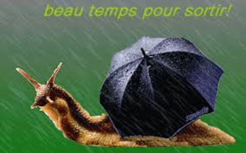 voila la pluie .....