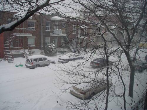 5 vérités ou idées fausses sur l'hiver à Montréal