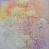 Fleurs au sel