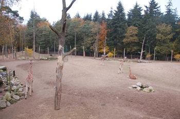 dierenpark amersfoort d50 2011 069