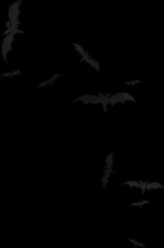 Animaux d'Halloween Série 4