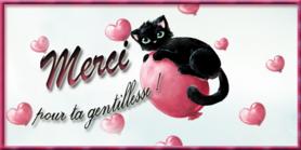 """Résultat de recherche d'images pour """"merci chat"""""""