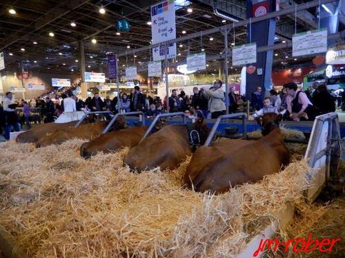 Salon de l'Agriculture 2015. La Journée Limousine, un rendez-vous de limousin (suite et fin)