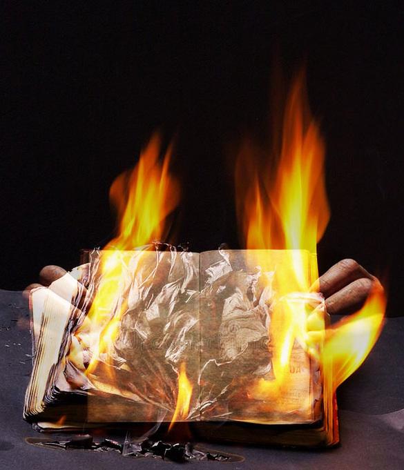 l'oeil & la plume...  les livres brûlent