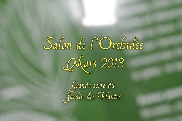 ORCHIDEES 2013-1-OB