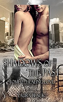 Shadow of the past, tome 2 : Healing love