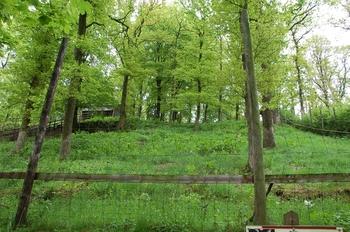 Parc animalier Bouillon 2013 enclos 157
