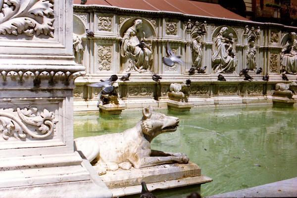 Sienne (Piazza d'El Campo, Fuente Gaïa)