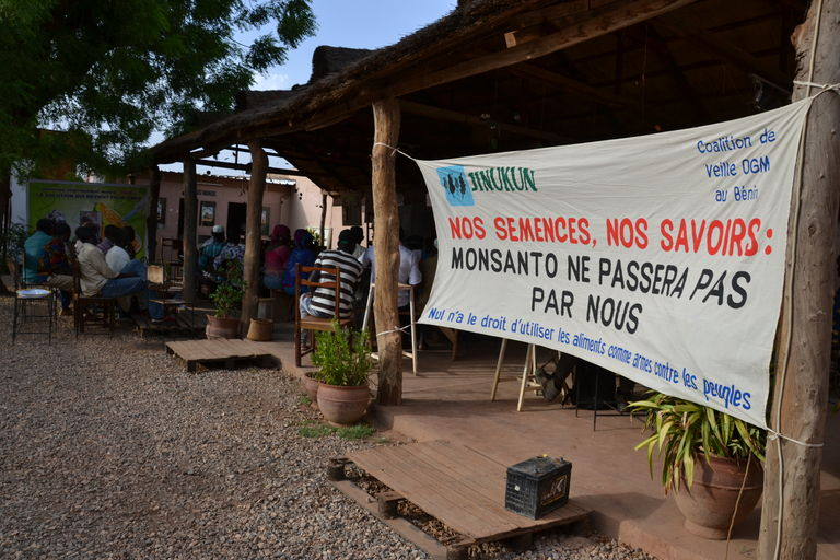 Au Burkina Faso, préparation de la manifestation contre les OGM.