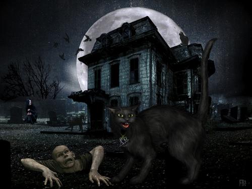 Chat noir d'Halloween