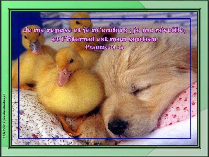 L'Eternel est mon soutien - Psaumes 3 : 6