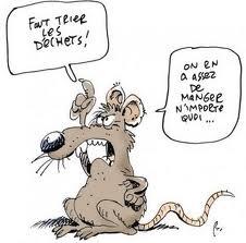 Les rats et les fées