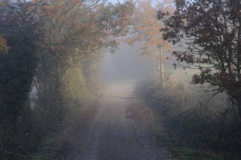 Brume-brouillard-2-8682.jpg