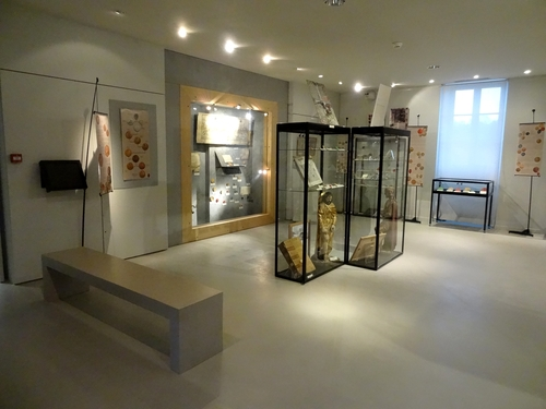 """""""Histoire de sceaux"""" une très belle exposition  au Musée du Pays Châtillonnais-Trésor de Vix"""